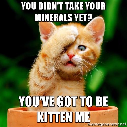 kitten minerals